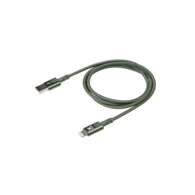 Câble Original USB - Lightning 1.00m vert